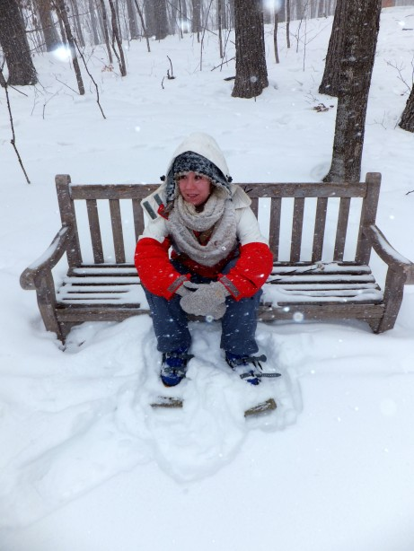 Just sitting on a snowy bench