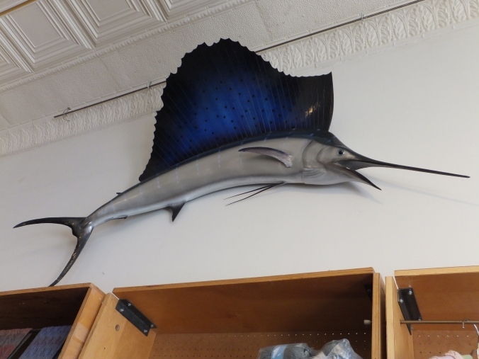 Who knows why there's a swordfish on the wall but I like it!